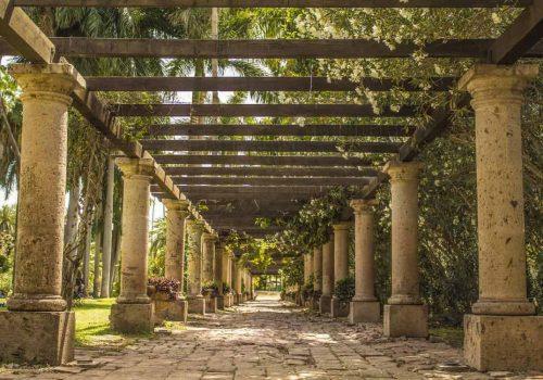 Jardin Botanico Benjamin Francis Los Mochis Sinaloa