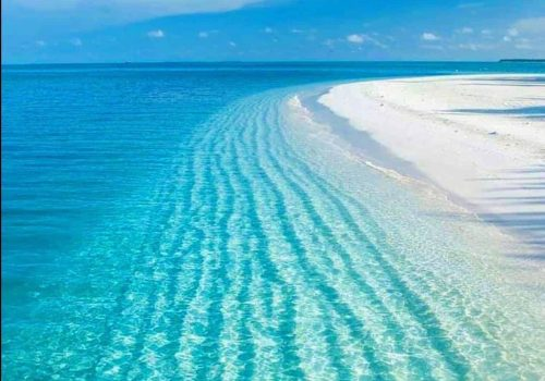 Punta Allen Quintana Roo Playas de Mexico
