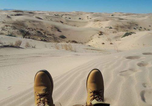 Desierto de Samalayuca Chihuahua